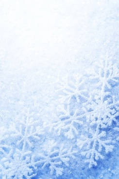 bright snow background 02 hd picture