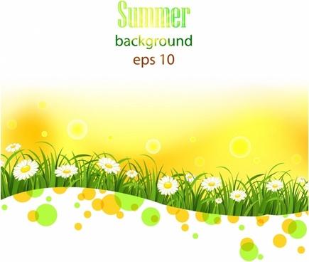 Bright summer flowers  background
