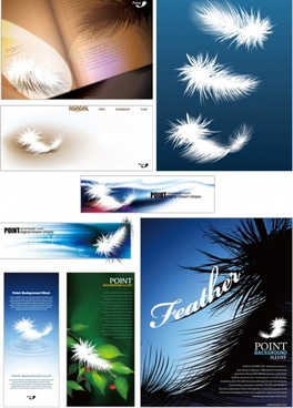 brilliant light feathers vector