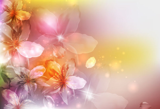 brilliant petal background vector
