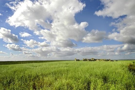 broad prairie hd image