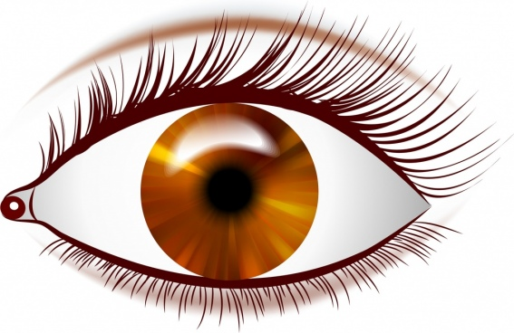 Eye Free Vector Download 697 Free Vector For Commercial Use