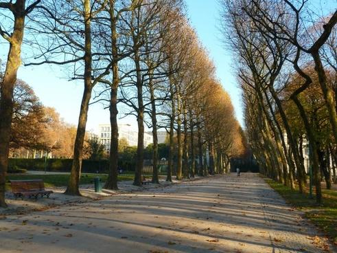 brussels belgium sidewalk