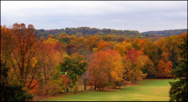 bryn athyn autumn