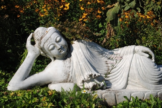 buddha statue fig