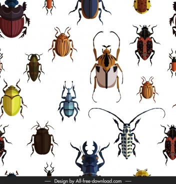 bugs pattern species icons decor colorful design