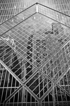 building reflection 2