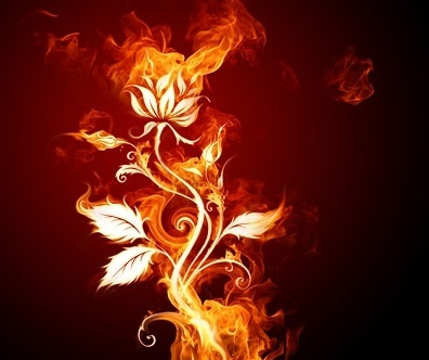 burning flowers picture