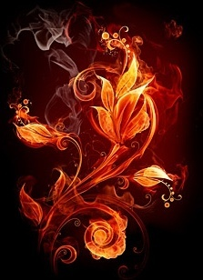 burning flowers picture 3