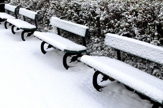 bush snow bench