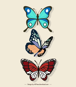 butterflies decor elements colorful sketch