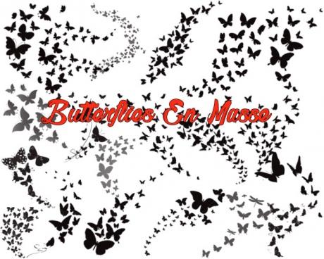 butterflies en masse