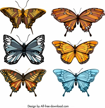 butterflies icons collection colorful modern design