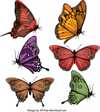 butterflies icons collection multicolored modern shapes design