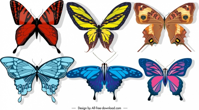butterflies icons colorful wings decor