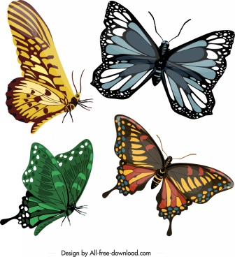 butterflies icons templates colorful modern shapes sketch