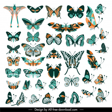 butterflies species icons collection colorful classic flat design
