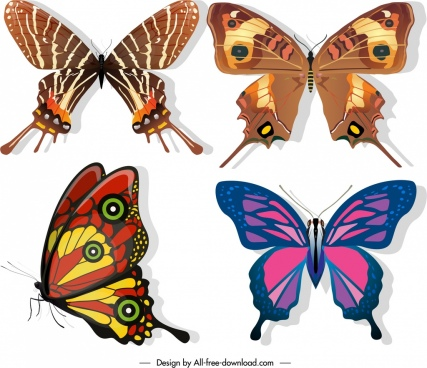 butterflies species icons dark colorful sketch