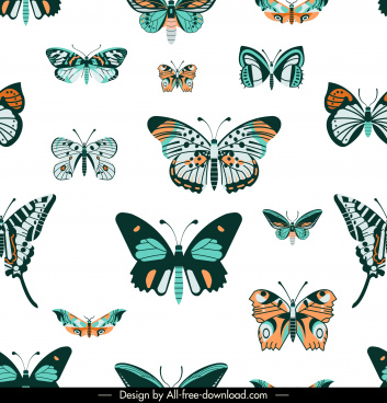 butterflies species pattern colorful flat decor