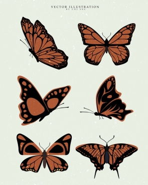 butterfly icons collection brown design various shapes