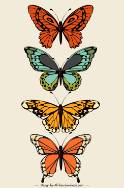 butterfly icons colorful flat symmetric sketch
