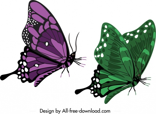 butterfly icons dark green violet sketch mockup design