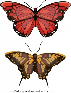 butterfly icons red brown decor modern design