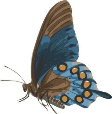 Butterfly Papilio Philenor Side clip art