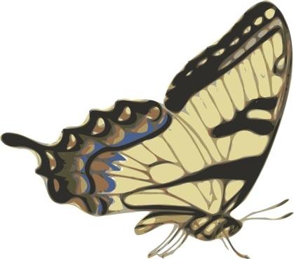 Butterfly Papilio Turnus Side View clip art