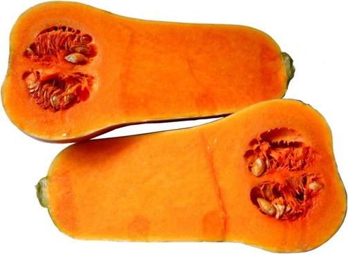 butternut pumpkin butternut squash