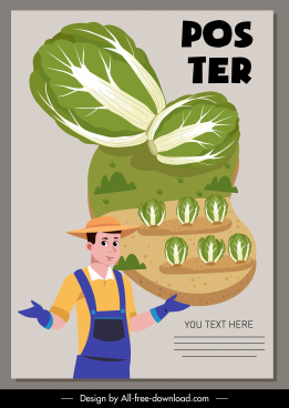 cabbage advertising poster farmer field agricultural products sketch