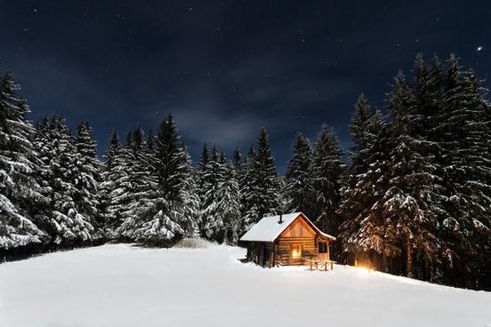 cabin chalet cold conifer evergreen forest frozen