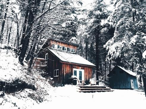 cabin chalet cold cottage evergreen forest frozen