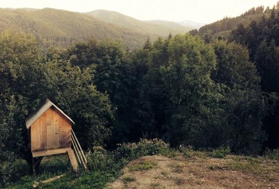 cabin forest hill hut landscape mountain rural tree