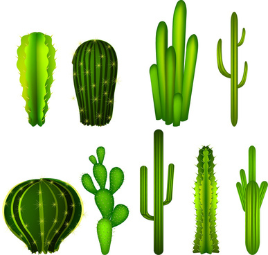 cactus free vector download 112 free vector for commercial use rh all free download com cactus victoria cactus vector png