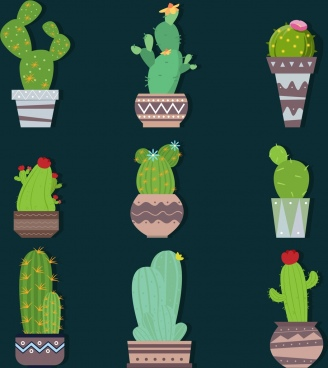 cactus icons collection various green types isolation