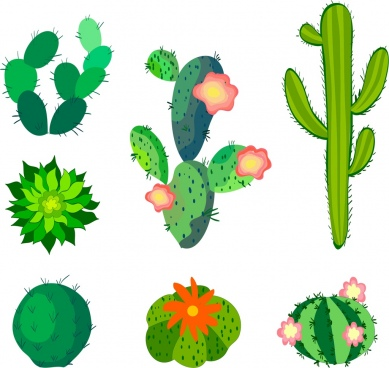cactus icons collection various green types sketch