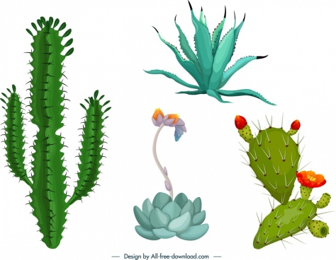 cactus icons templates colorful shapes design