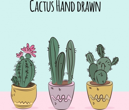 cactus pots drawing multicolored handdrawn decor