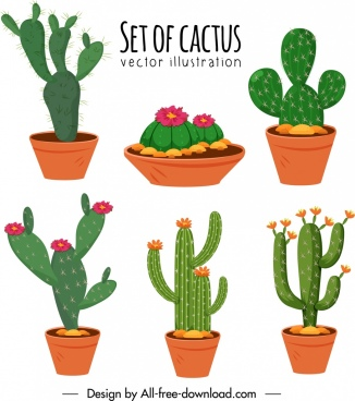 cactus pots icons colorful classical design