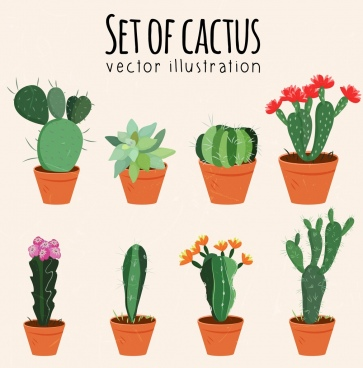 cactus pots icons various multicolored types isolation