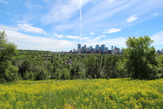 calgary first day of summer 2014