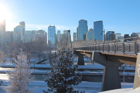 calgary new years walk round 2014