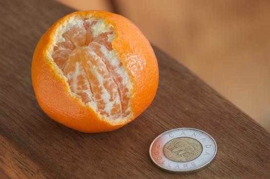 california clementines cuties