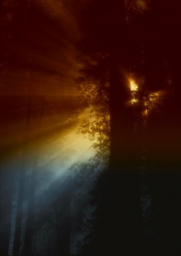 california sun rays