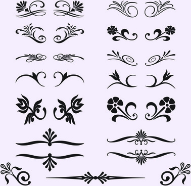 calligraphic with border ornament vector