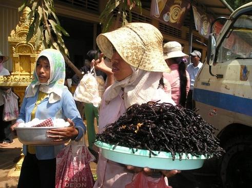 cambodia fried tarantula