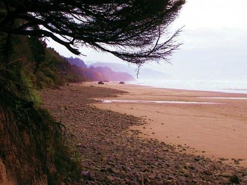 cannon beach oregon coastline