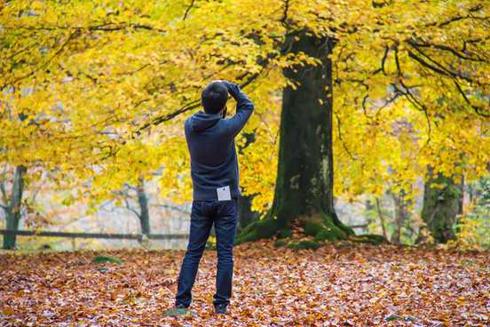 capture autumn