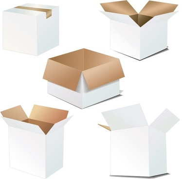 cardboard carton blank vector